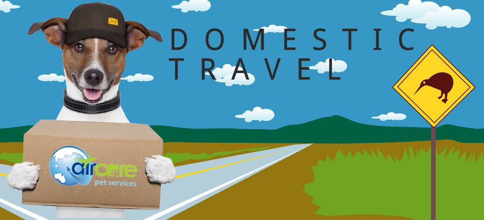 domestic travel for pets